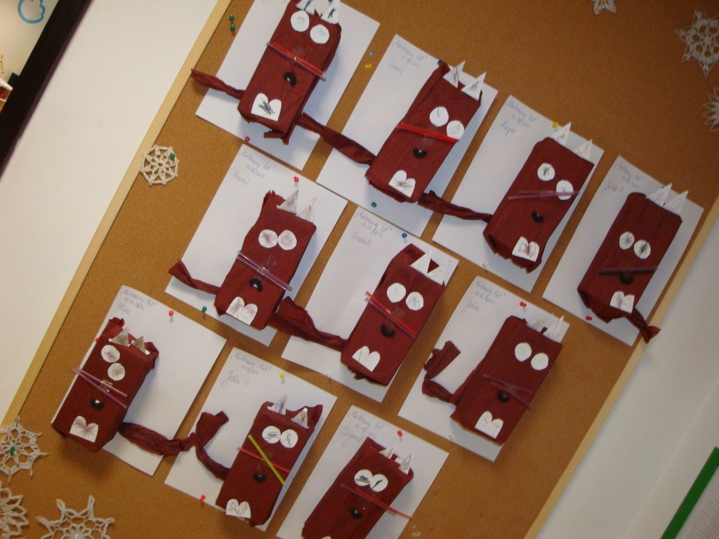 koty w przedszkolu hocki-klocki w częstochowie