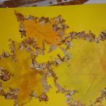 """""""Barwy Jesieni"""" – konkurs"""